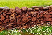 Masonry stonewall in spring with flowers Menorca — Stock Photo