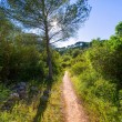 Menorca mediterranean track in es Mitjorn Gran — Stock Photo