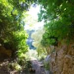 Menorca Cova dels Coloms Pigeons cave in es Mitjorn — Stock Photo #35190691