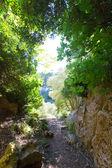 Menorca Cova dels Coloms Pigeons cave in es Mitjorn — Stock Photo
