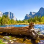 Yosemite Merced River el Capitan and Half Dome — Stock Photo #35704491