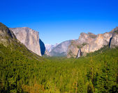 Yosemite el Capitan and Half Dome in California — Stock Photo