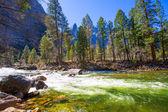 Yosemite National Park Merced River in California — Stock Photo