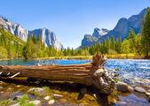 Yosemite Merced River el Capitan and Half Dome — Stock Photo