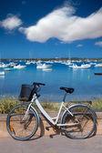 Formentera bicycle at Estany des Peix lake — Stock Photo