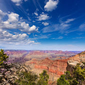 Arizona Grand Canyon Park Mother Point and Amphitheater — Stock Photo