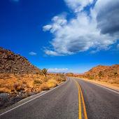 Joshua Tree boulevard Road in Yucca Valley desert California — Stock Photo