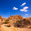 Stock Photo: Skull rock in Joshutree National Park Mohave California