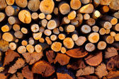 Firewood stacked fire wood different sizes — Stock Photo