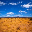 Stock Photo: Mohave desert in CaliforniYuccValley