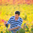 Stock Photo: Farmer min vineyard harvest autumn leaves in mediterranean