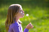 Blond kid girl blowing dandelion flower in green meadow — Stock Photo