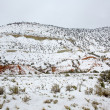 NevadUSspring snow in mountains — Stock Photo #37661037