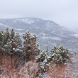 NevadUSspring snow in mountains — Stock Photo #37661159
