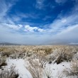 Stock Photo: Nevada USA spring snow in the mountains
