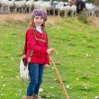 Stock Photo: Kid girl shepherdess happy with flock of sheep and stick