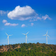 Stock Photo: Aerogenerator windmills in the mountain top
