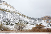 Nevada USA spring snow in the mountains — Stock Photo