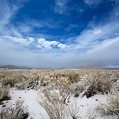 Nevada USA spring snow in the mountains — Foto Stock