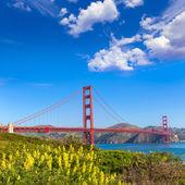 Golden Gate Bridge San Francisco from Presidio California — Stock Photo