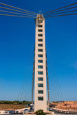 Elche Alicante Bimilenario suspension bridge over Vinalopo — Stock Photo