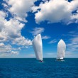Sailboats regatta sailing in Mediterranean — Stock Photo #39750591