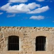 Tabarca Island battlement fort masonry wall detail — Stock Photo #39755563