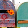 California poppy grunge mailboxes along Pacific Highway Route 1 — Stock Photo