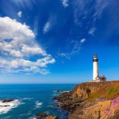 California Pigeon point Lighthouse in Cabrillo Hwy coastal hwy 1 — Stock Photo