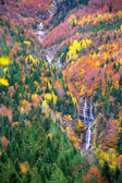Autumn Bujaruelo Ordesa waterfal in colorful fall forest Huesca — Stock Photo