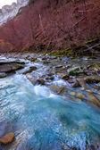 Arazas river Valle de Ordesa valley Pyrenees Huesca Spain — Stock Photo