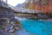 Arazas river Valle de Ordesa valley Pyrenees Huesca Spain — Stock Photo