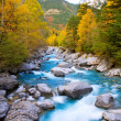 Rio Ara river Bujaruelo in Valle de Ordesa valley Pyrenees Huesc — Stock Photo #40387549