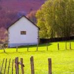 Meadow farm in autumn at Irati Pyrenees Navarra Spain — Stock Photo
