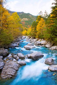Rio Ara river Bujaruelo in Valle de Ordesa valley Pyrenees Huesc — Stock Photo