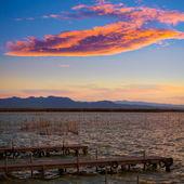 Albufera sunset lake park in Valencia el saler Spain — Stok fotoğraf