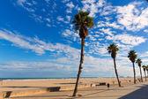 Valence malvarrosa las arenas plage palmiers dans patacona — Photo