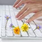 Ekoloji kavramı klavye yazarak kadın el — Stok fotoğraf #5507738