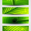 Collection of banners texture of green leaf — Stock Vector #12530419