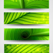 Collection of banners texture of green leaf - Stock Vector