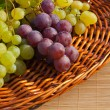 Composition with grapes — Stock Photo