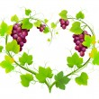 Grapes with leaves in the form of heart — Stock Vector
