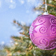 Christmas ball on the tree - Stock Photo