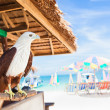 Eagle sitting at bar on beach — Stock Photo