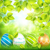 Natural background with Easter eggs — Stock Vector