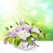 Lilac in a basket — Stock Photo