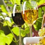 rode en witte wijn — Stockfoto #48691611