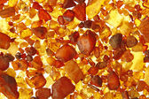 Amber from the Baltic Sea, Gemany — Stock Photo