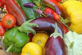 Mediterranean vegetables — Stock Photo