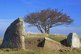 Megalithic stone grave — Stock Photo